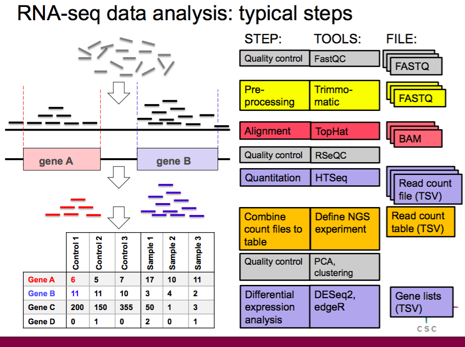 RNA-seq tutorial for differential expression analysis